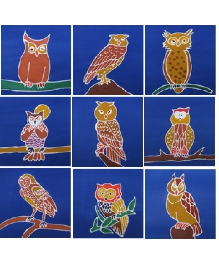Owl Packet